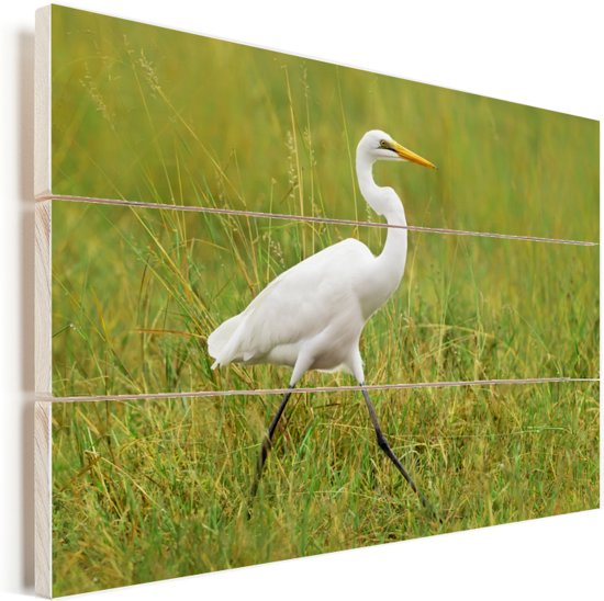 Grote zilverreiger loopt door een grasveld Vurenhout met planken 160x120 cm - Foto print op Hout (Wanddecoratie) XXL / Groot formaat!