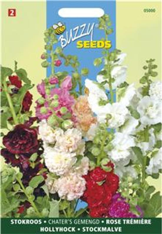 Alcea rosea Chaters mix