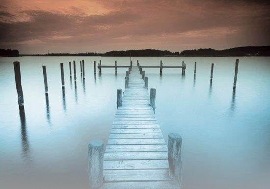 Fotobehang Brug, Natuur | Blauw | 312x219cm