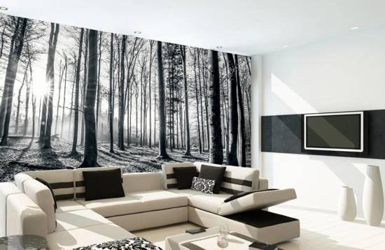 Fotobehang Zwart Wit.Fotobehang Forest Van Mural 253 X 366 Cm Zwart Wit