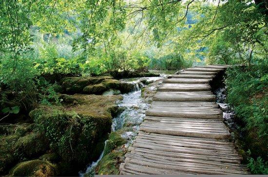 Fotobehang Forest Waterfalls Flow Path   M - 104cm x 70.5cm   130g/m2 Vlies