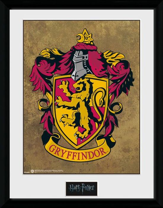 Bolcom Harry Potter Gryffindor 30 X 40 Collector Print