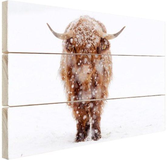 Highland in de sneeuw Hout 80x60 cm - Foto print op Hout (Wanddecoratie)