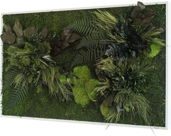 Verticale tuin - Plant islands - 100 x 60cm