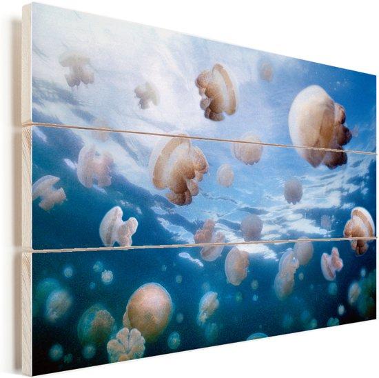 De Mastiagias kwallen wonen in het kwallenmeer van Palau Vurenhout met planken 90x60 cm - Foto print op Hout (Wanddecoratie)