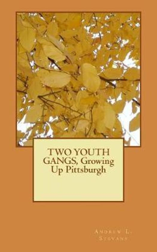 Two Youth Gangs, Growing Up Pittsburgh