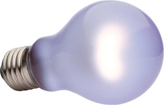 Neodymium Daglichtlamp Sg A19 60W