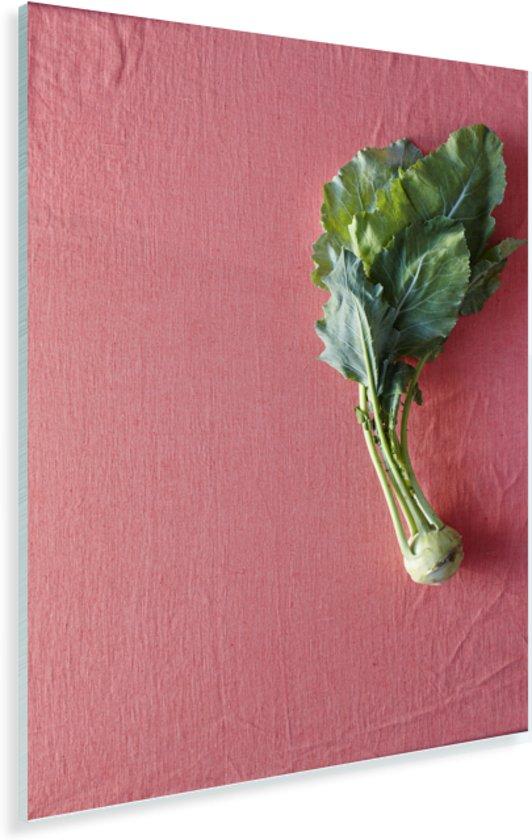 Enkele bol van koolrabi op een roze achtergrond Plexiglas 60x90 cm - Foto print op Glas (Plexiglas wanddecoratie)