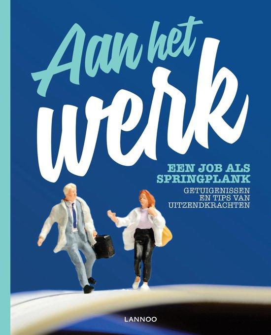 Aan het werk Een job als springplank E boek