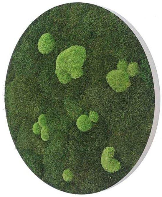 Ronde verticale tuin - Flat & Pole moss - Diameter 54cm