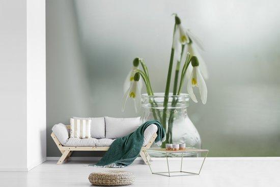 Fotobehang vinyl - Sneeuwklokjes in een doorzichtige vaas breedte 420 cm x hoogte 280 cm - Foto print op behang (in 7 formaten beschikbaar)