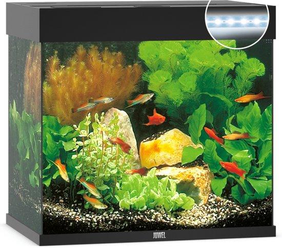 juwel aquarium lido 120 led zwart 61 x 41 x 58 cm ca