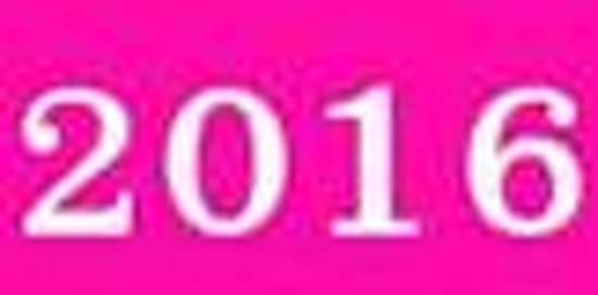 2016: Subtitle: Kalender/Dato Bog: 1 Uge P� 2 Sider, Format 6 X 9 (15,2 CM X 22,9 CM), D�kke Pink
