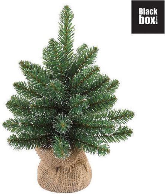 bol.com | Black Box Derby Pine - Kunstkerstboom 30 cm hoog - Zonder ...