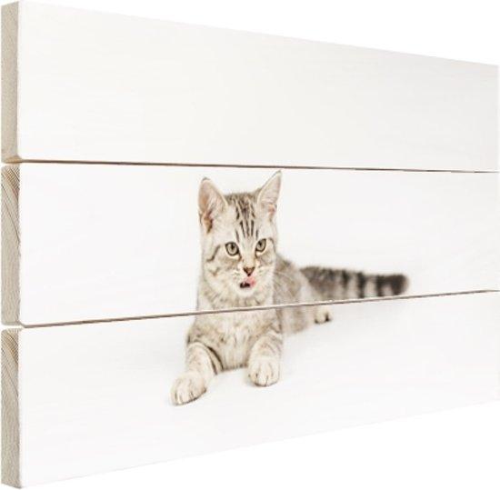 FotoCadeau.nl - Kitten met witte achtergrond Hout 120x80 cm - Foto print op Hout (Wanddecoratie)