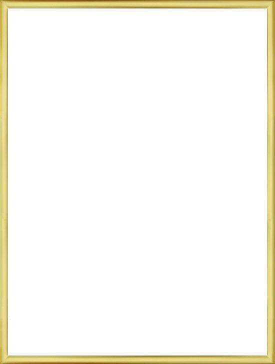 Homedecoration Almelo – Fotolijst – Fotomaat – 35 x 73 cm – Goud Glans