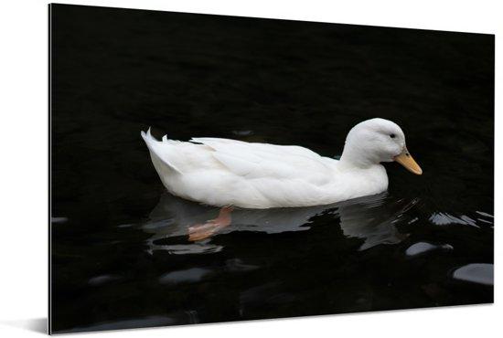 Witte soepeend in donker water Aluminium 60x40 cm - Foto print op Aluminium (metaal wanddecoratie)