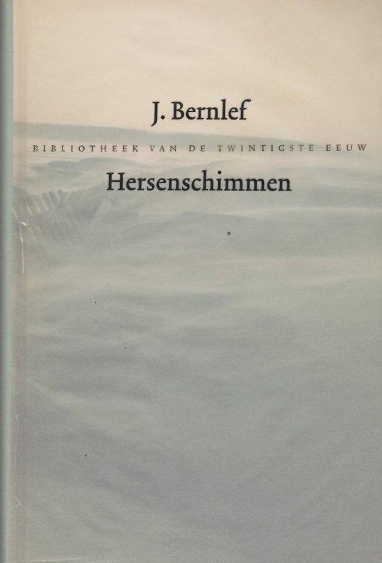 Pdf Boek Hersenschimmen
