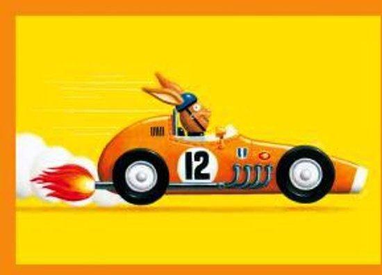 Kinder wenskaart Haas in de raceauto