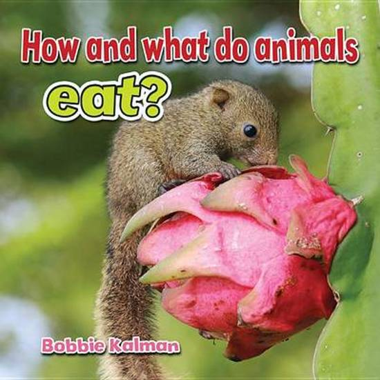 How and What Animals Eat