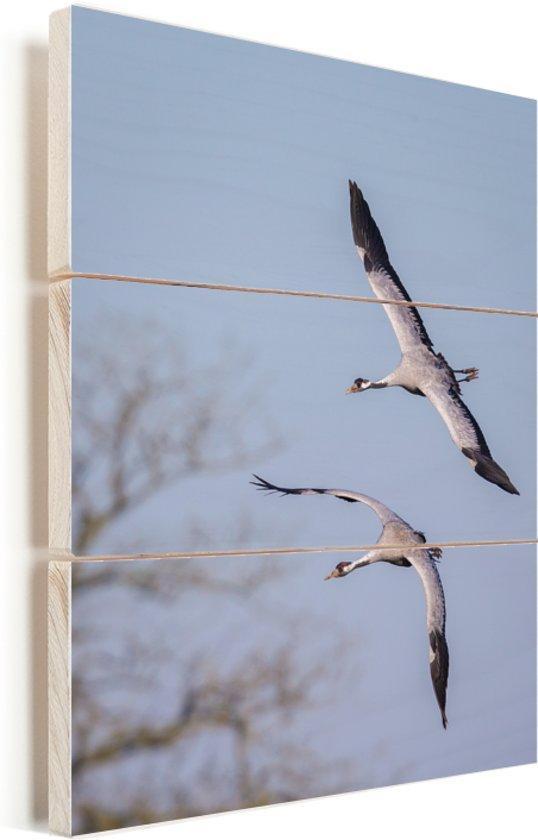 Twee Europese kraanvogels vliegen in de lucht Vurenhout met planken 30x40 cm - klein - Foto print op Hout (Wanddecoratie)