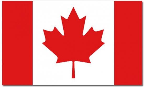 Afbeeldingsresultaat voor vlag canada