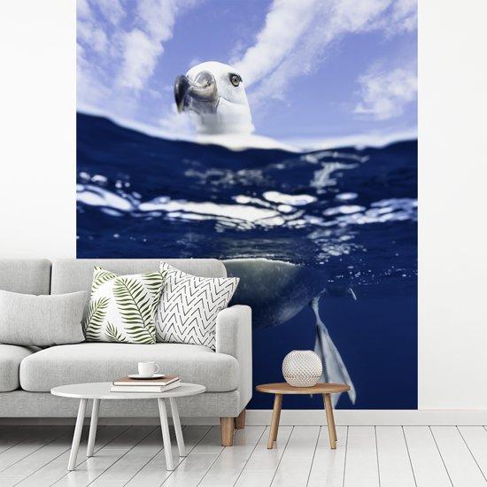 Fotobehang vinyl - Reuzenalbatros in het water breedte 320 cm x hoogte 380 cm - Foto print op behang (in 7 formaten beschikbaar)