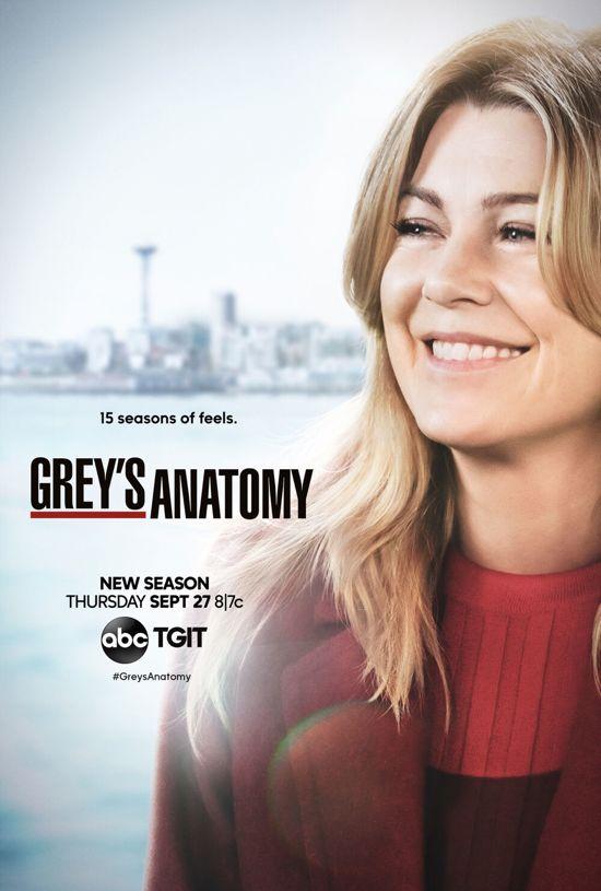 Grey's Anatomy - Seizoen 15 (Zonder NL)