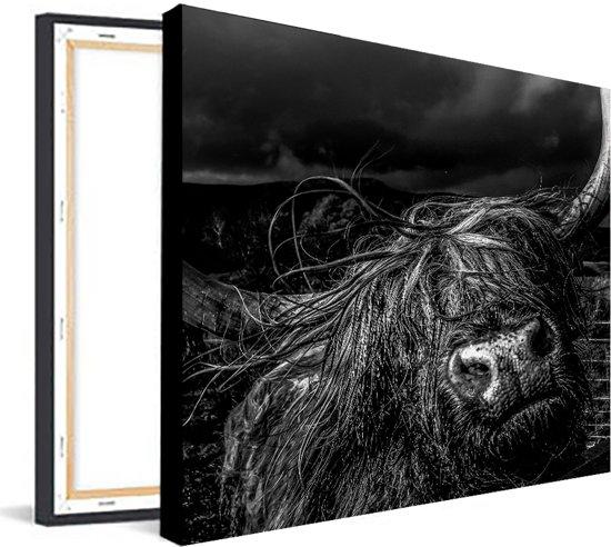 Canvas Buffel |  60 x 60 cm | Schurk Design