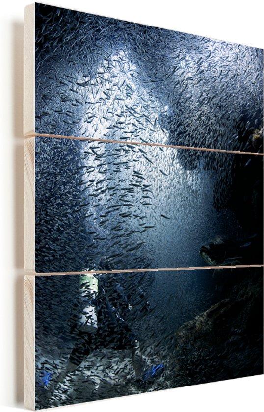 Duiker wordt in de grotten bij Grand Cayman ondergedompeld door vissen Vurenhout met planken 60x80 cm - Foto print op Hout (Wanddecoratie)