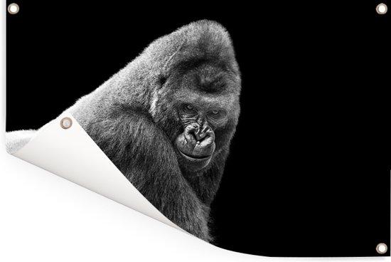Een schitterende Gorilla kijkt naar beneden Tuinposter 90x60 cm - Tuindoek / Buitencanvas / Schilderijen voor buiten (tuin decoratie)