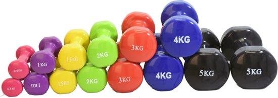 Vinyl Dumbbell Focus Fitness - 2 x 1 kg - Paars