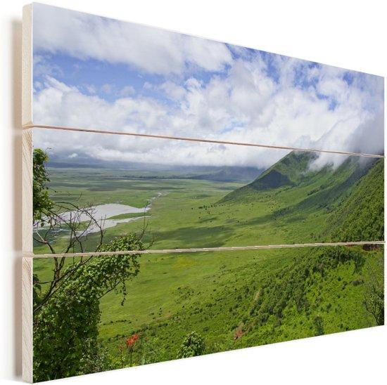 De groene savanne van Ngorongoro in Tanzania Vurenhout met planken 120x80 cm - Foto print op Hout (Wanddecoratie)