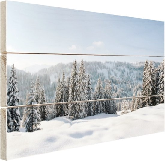Besneeuwd landschap in Duitsland Hout 60x40 cm - Foto print op Hout (Wanddecoratie)