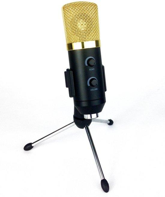 Studio microfoon met Echo en voeding via USB of 48v fantoom in Kleine Wijd / Lytse Wild