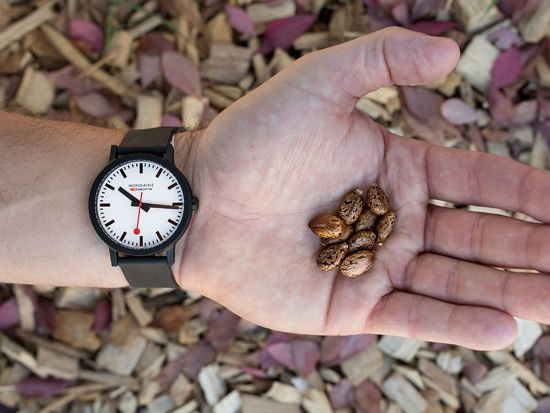Mondaine Essence Horloge