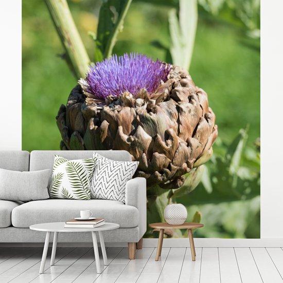 Fotobehang vinyl - Een kardoen met droge contouren breedte 220 cm x hoogte 220 cm - Foto print op behang (in 7 formaten beschikbaar)
