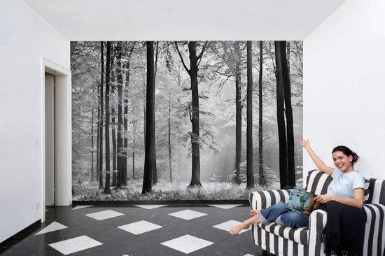 Fotobehang Avalon - 8-delig  - 366 × 254 cm