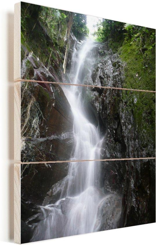 Waterval in het Nationaal park Henri Pittier in Venezuela Vurenhout met planken 60x80 cm - Foto print op Hout (Wanddecoratie)