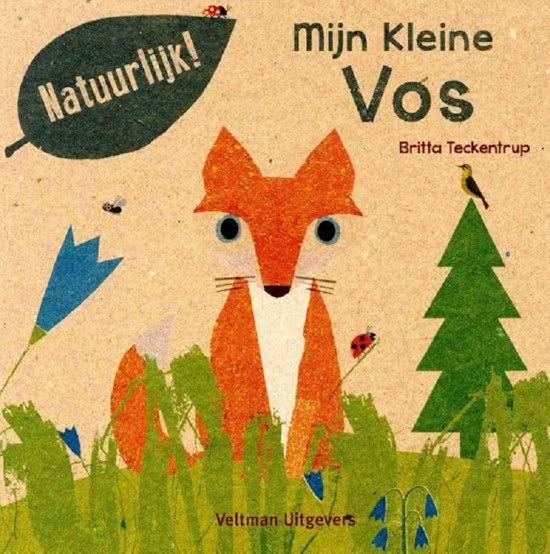 Boek cover Mijn kleine vos van Britta Teckentrup (Hardcover)