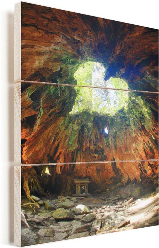 Hartvormig gat in een Japans boomstronk op het eiland van Yakushima Vurenhout met planken 60x90 cm - Foto print op Hout (Wanddecoratie)