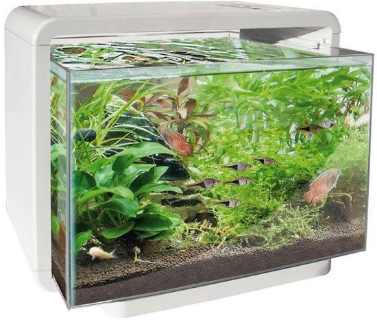 superfish home aquarium 34x25x28 5 cm 15l wit. Black Bedroom Furniture Sets. Home Design Ideas