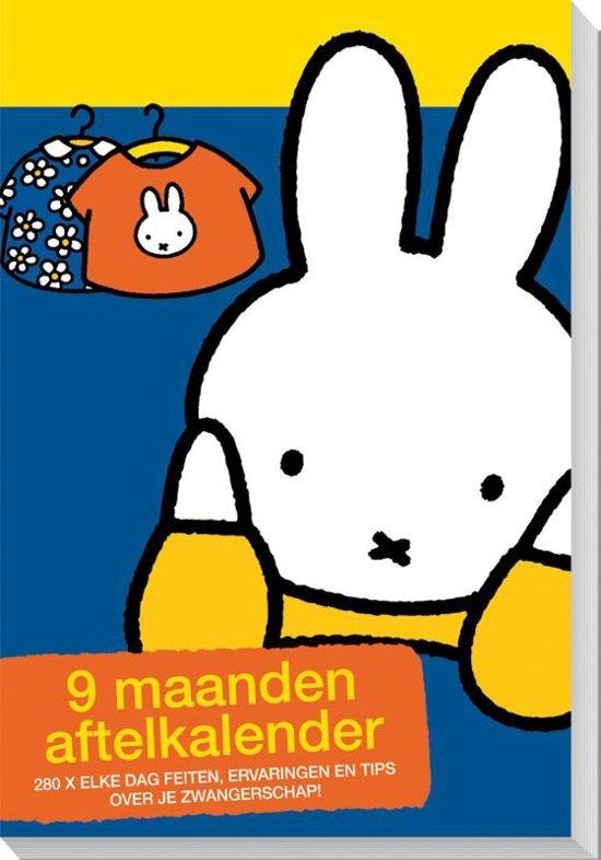 InterStat Aftelkalender Nijntje 9 Maanden 19x13 cm