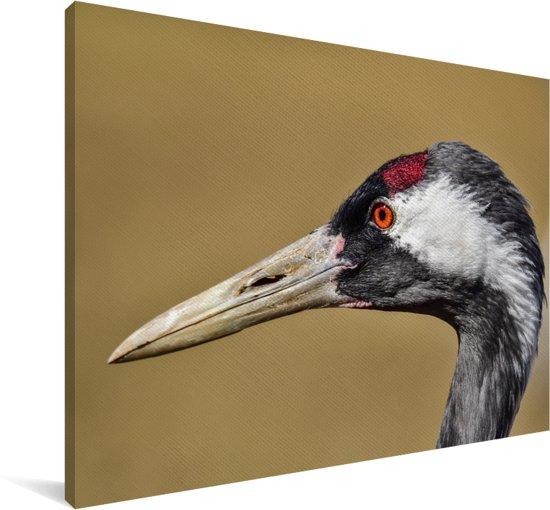 De kop van een Europese kraanvogel Canvas 90x60 cm - Foto print op Canvas schilderij (Wanddecoratie woonkamer / slaapkamer)