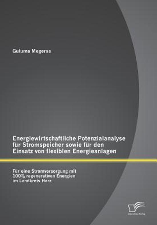 Energiewirtschaftliche Potenzialanalyse F r Stromspeicher Sowie F r Den Einsatz Von Flexiblen Energieanlagen