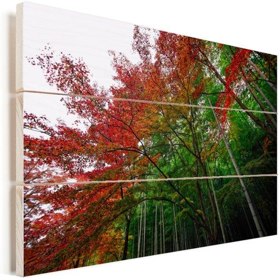 Vele kleuren in het Bamboebos van Arashiyama Japan Vurenhout met planken 90x60 cm - Foto print op Hout (Wanddecoratie)