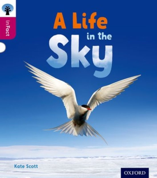 ORT:INFACT:L10 A LIFE IN THE SKY