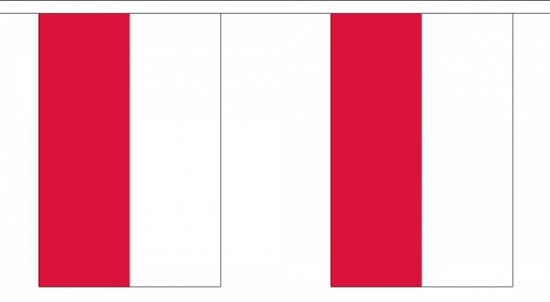 Luxe Polen vlaggenlijn 9 m