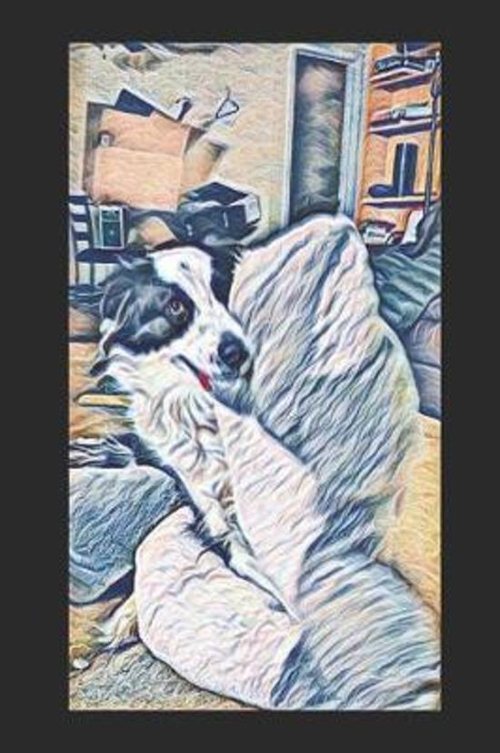 Mr. Kitty Humping His Bulldog