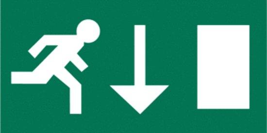 Van Lien Alulux PPT pictogram noodverlichting 42631504